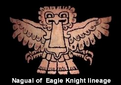 Nagual of Eagle Knight lineage